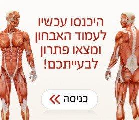 באנר גוף האדם