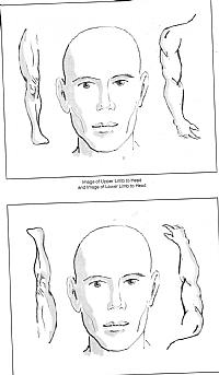 תמונת המחשה של דיקור בתצורת הדמייה